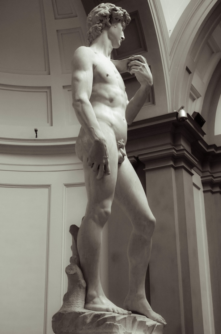 The Statue of David, Michelangelo