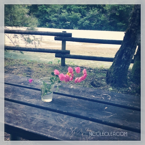 Living in Italy - Flowers left on picnic table italy