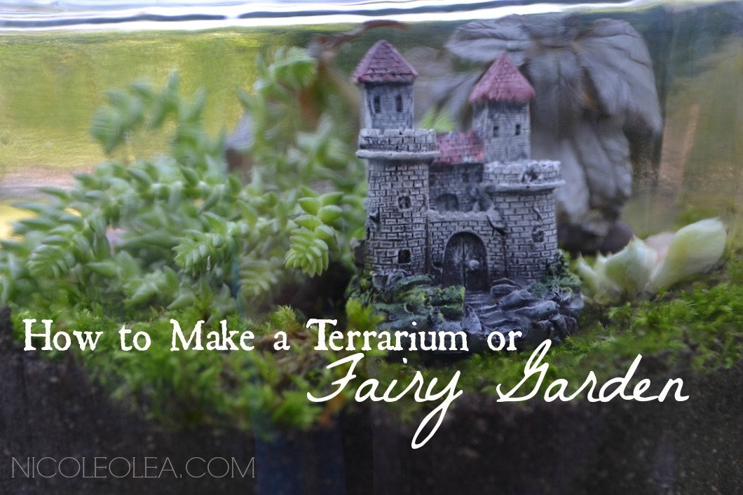 how to make a terrarium OR FAIRY GARDEN