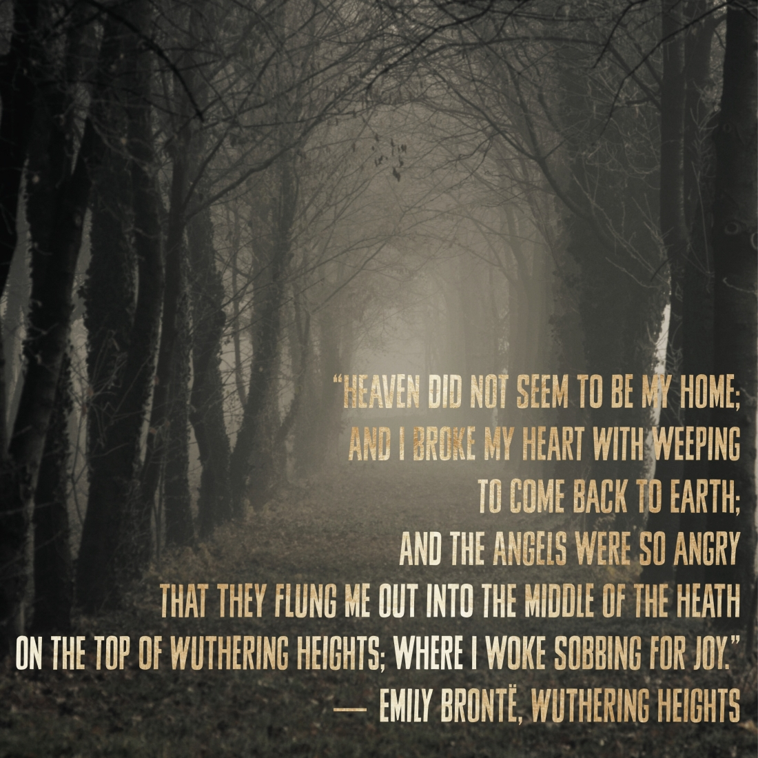 quote, emily bronte wuthering heights, heaven, fog,