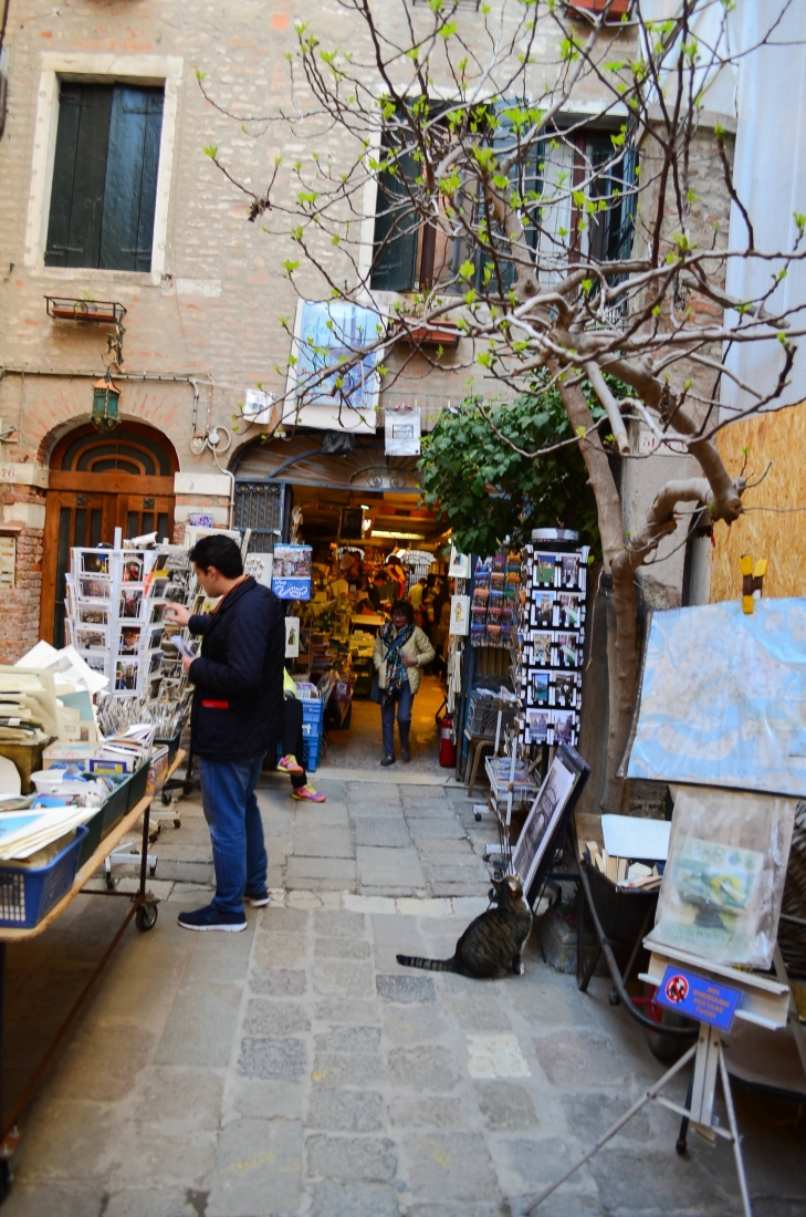 Libreria Acqua Alta Venice Book Shop-8