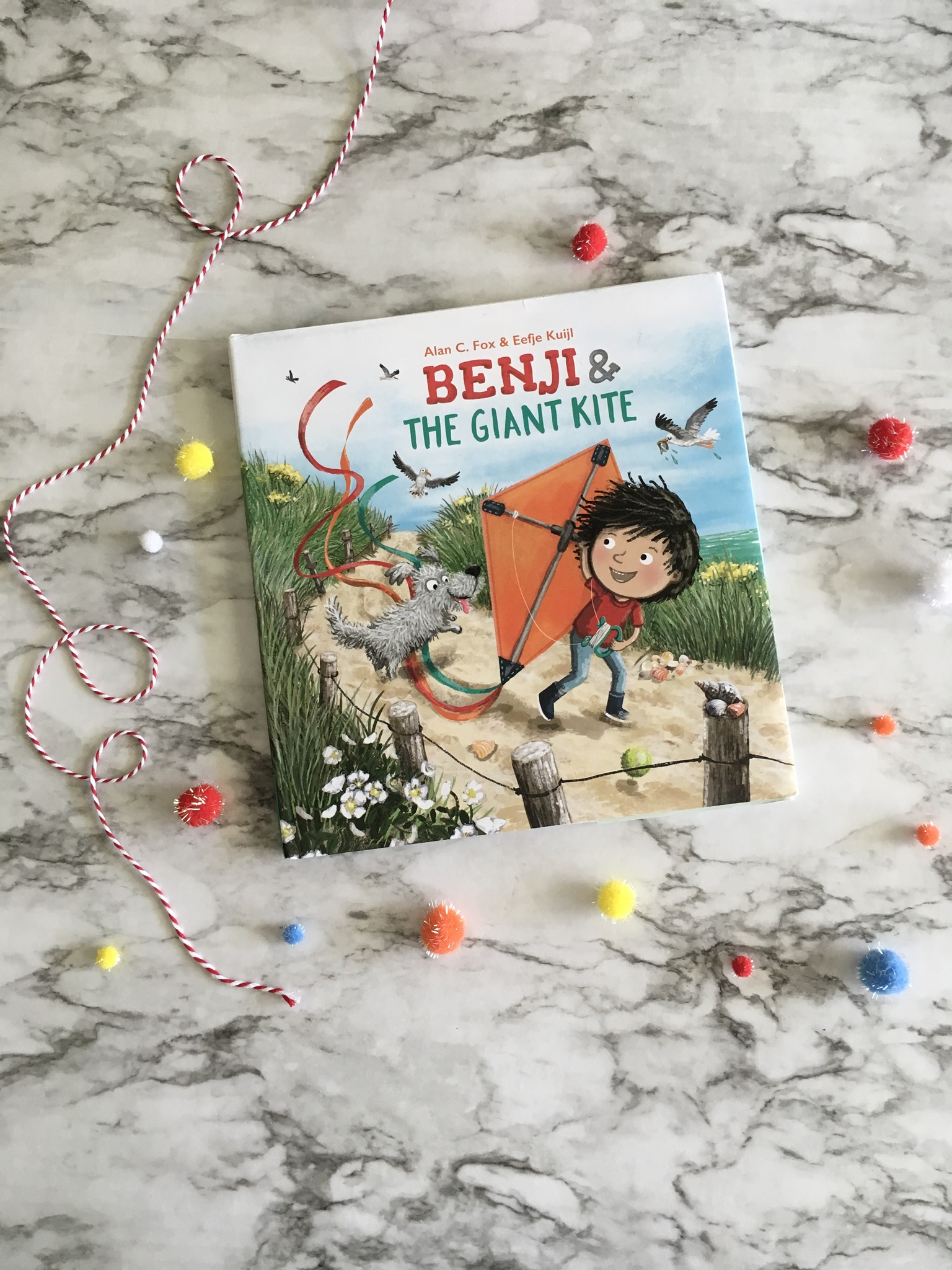 Benji & The Giant Kite, Children's Book Review