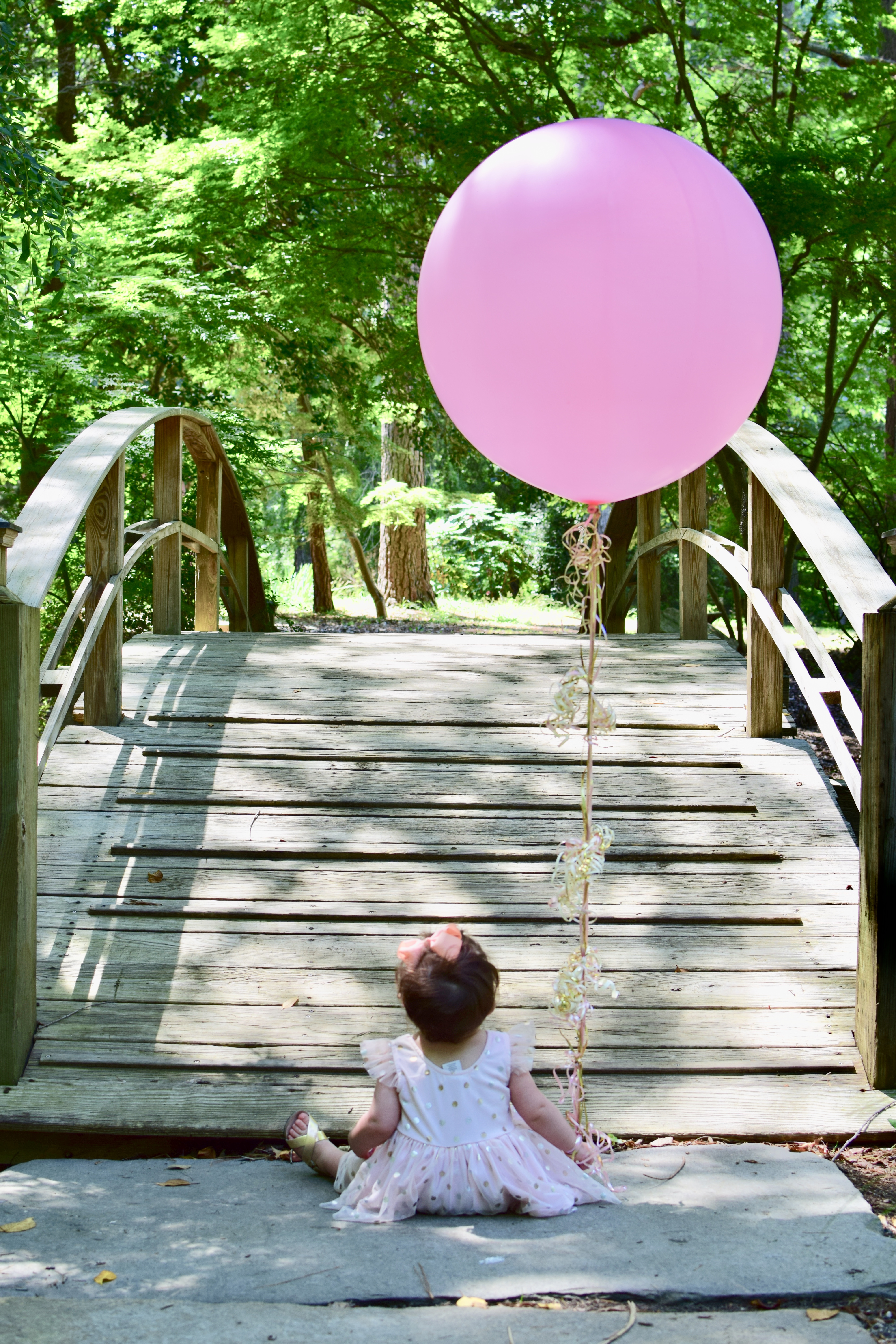baby girl first birthday photo bridge balloon